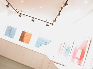 galeria-acanto_01