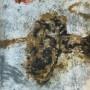 JOSÉ MANUEL CIRIA Máscaras de la mirada I, 1996 Grabado al aguatinta, 7/75. 80 x 62 cm p.v.p:440 € + IVA =  532,40 €