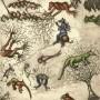 PACO AGUILAR, Terra incógnita (b), 2014 Aguatinta y aguafuerte Medida de Papel 40 x 31 cm Plancha 15 x 21,5 cm Edición 25 ejemplares p.v.p. Obra: 270,00 € + IVA = 326,70 €