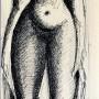 Pituco. Desnudo femenino. (1964) Tinta sobre papel. 39,5 x 13 cm p.v.p obra enmarcada: 475  € + IVA =574.75 €
