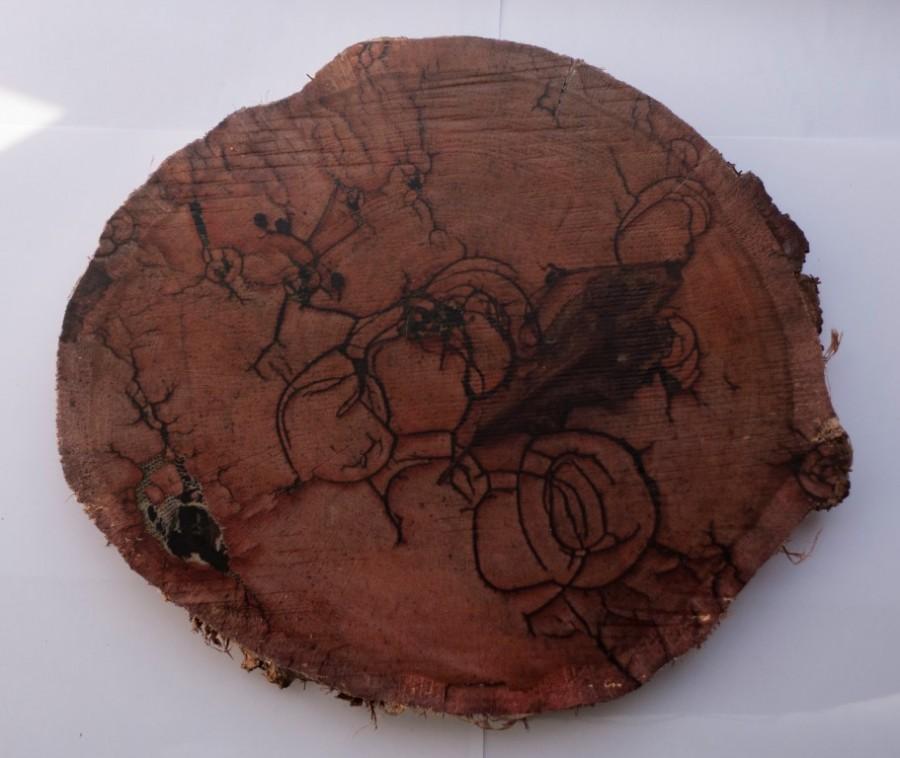 Karlos Kaplan, Naturaleza Muerta, Serie Ruptura, 2017. Fotografía, transferencia sobre madera , 27,5 x 31,5 cm. Pieza única