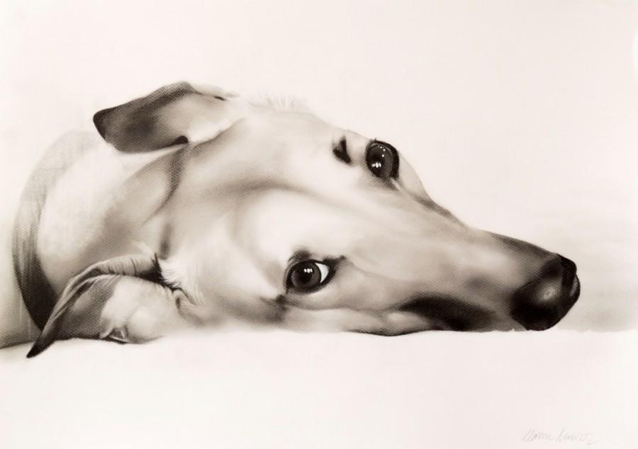 MANU MUÑOZ, I JUST WANNA BE YOUR DOG II . 50 x 70 cm. Grafito-papel. 2018